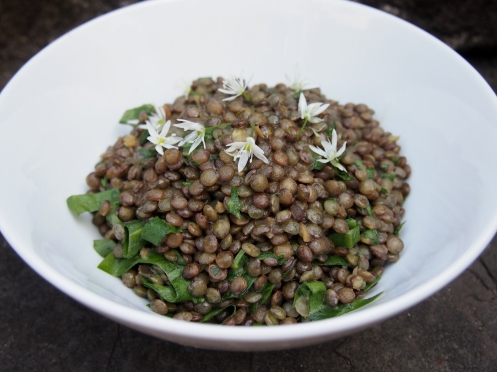 French lentils main pic